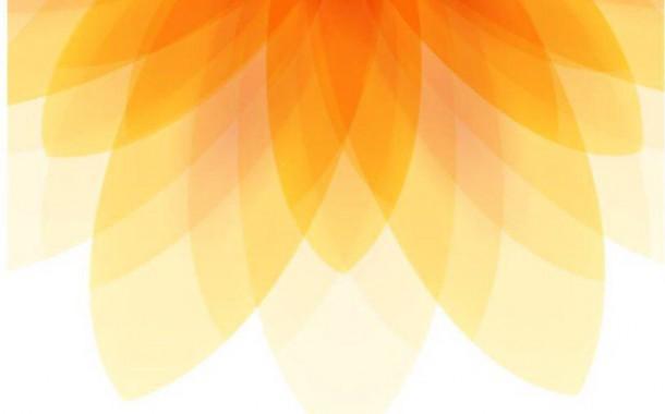 نارنجی ترین نارنجی