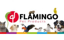 قیمت روز محصولات فلامینگو 10 آذر 99