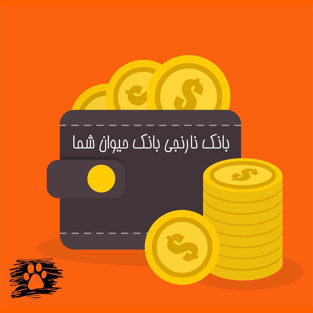افتتاح بانک نارنجی در جشن 5+50